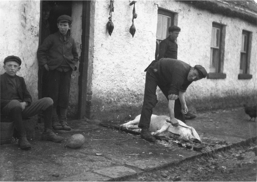 Image: A man removes bristles from a pig at a doorway, north County Antrim, 1906. Two boys look on to the left, with an inflated bladder football. Shackles for hanging the pig are visible to the left of the door (BELUM.Y10024).