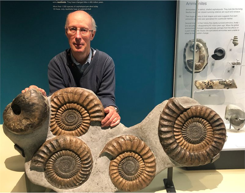 Image: Celebrating my 60th birthday with some old friends in the Ulster Museum. Four ammonites and a nautilus, from that fossil-hunter's paradise of Lyme Regis.