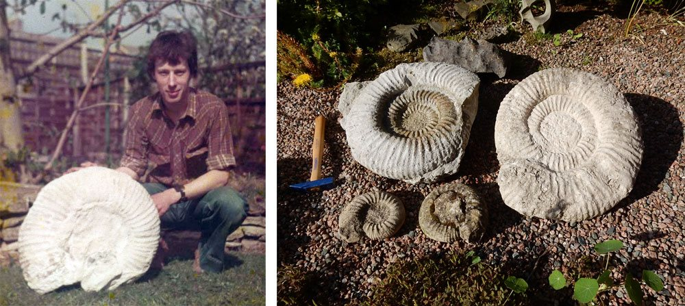 Image: My first Portland ammonite, Spring 1980. I christened him 'Sidney' and he is still a much-loved member of the family. I think I still have that shirt too… And some new additions to the family from the last few years. Such elegance…