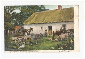 Irish Farmyard