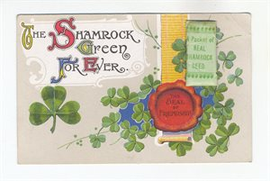 The Shamrock Green For Ever'