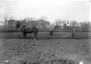 Ploughing in front of Sentry Hill:  Tom McKinney and Alex McIlwaine