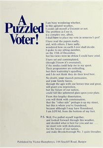 A Puzzled Voter!
