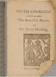 Youth and Bloom; Its Game you are Making; The Beautiful Bloom; Dewy Morning