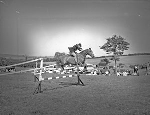 Horse Jumping at Children's Gymkhana Belfast