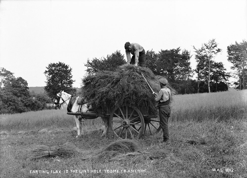 Carting flax, Toome, County Antrim. HOYFM.WAG.1012 © National Museums Northern Ireland