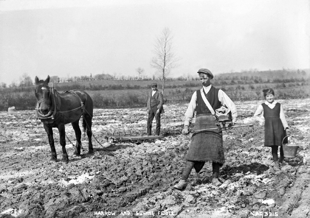 A horse pulling a harrow which was used to break up large lumps of soil after ploughing and to remove weeds from drills. HOYFM.WAG.3315 © National Museums Northern Ireland